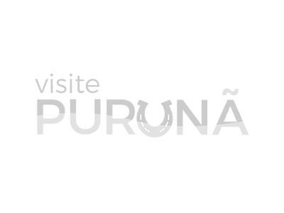 São Luiz do Purunã